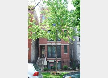 2143 W Crystal Unit 2, Chicago, IL 60622