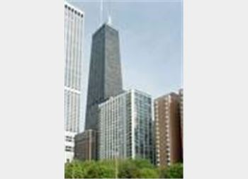 222 E Pearson Unit 2201, Chicago, IL 60611