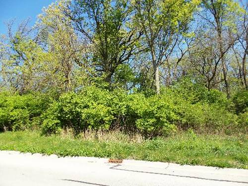 LOT#22 Thomas, Morris, IL 60450