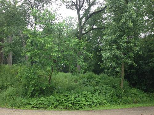 Lot#180 White Face, Woodstock, IL 60098