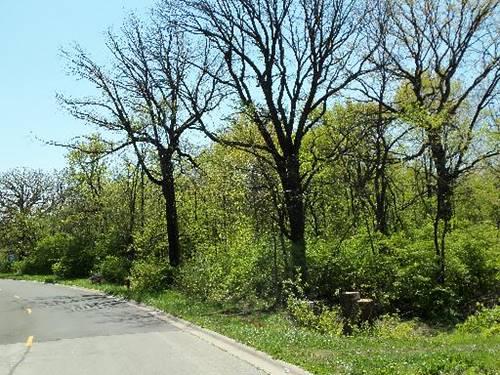 LOT #9 Oak Grove, Morris, IL 60450