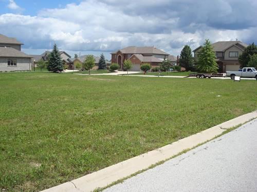 22672 Joshua, Frankfort, IL 60423