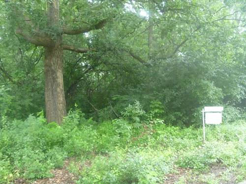 Lot 2 Fairview, Lake Forest, IL 60045