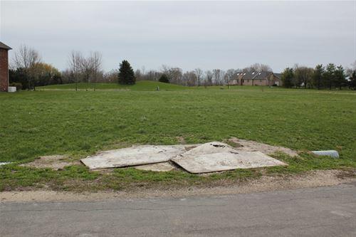 3935 W Nettle Creek, Morris, IL 60450
