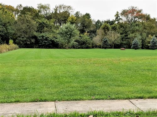 21151 Wooded Cove, Elwood, IL 60421