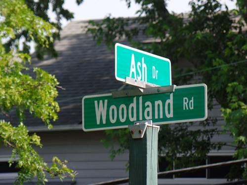 Lot 1 Ash, Oakwood Hills, IL 60013