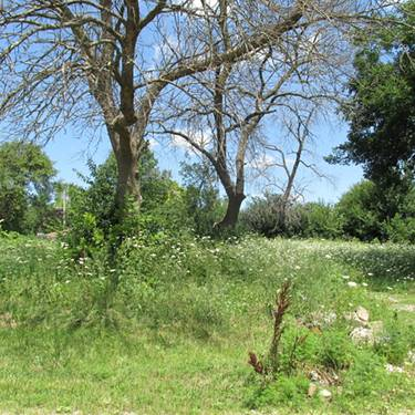Lot 2 Bolles, West Chicago, IL 60185