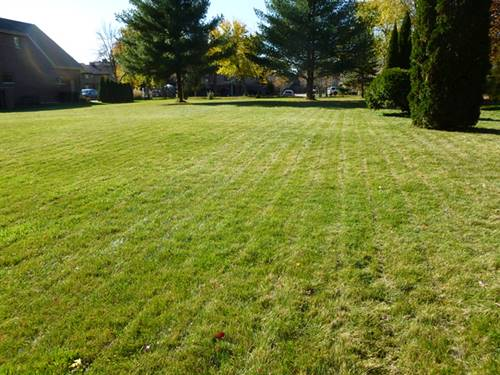 Lot #1 Sycamore, Medinah, IL 60157