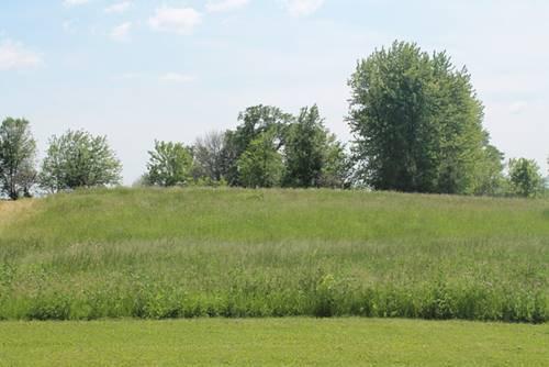 11302 Brighton Oaks, Yorkville, IL 60560