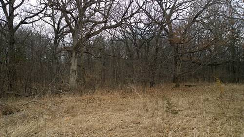 Lot 4 Griswold Springs, Plano, IL 60545