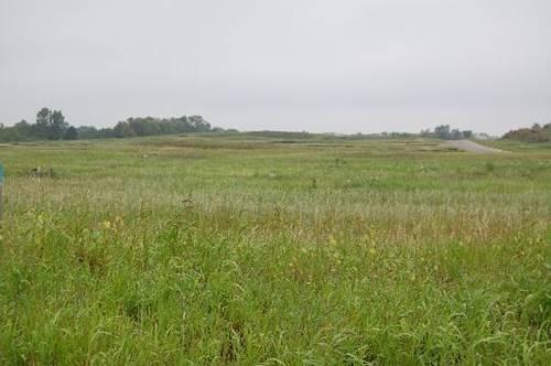 Lot 58 Meadow, Marengo, IL 60152