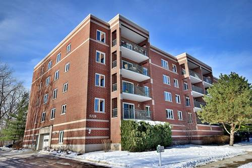 5320 N Lowell Unit 207, Chicago, IL 60630