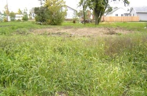 109 W Plumb, Gifford, IL 61847