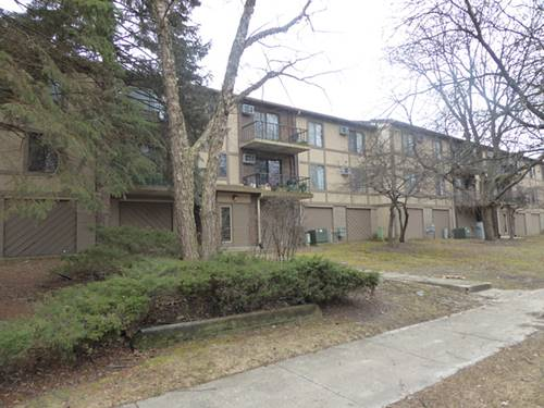 528 E Bailey Unit 202, Naperville, IL 60565