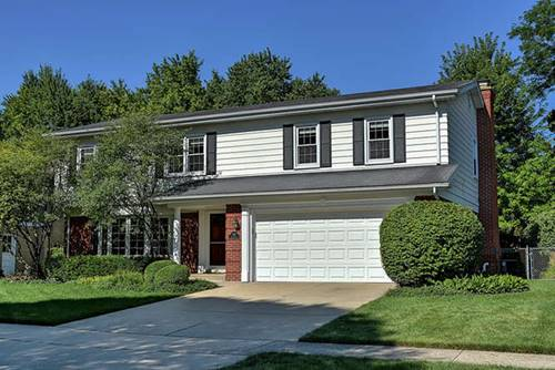 518 S Yale, Arlington Heights, IL 60005