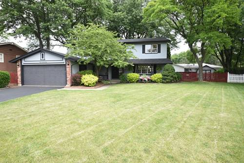 219 Brighton, Elk Grove Village, IL 60007