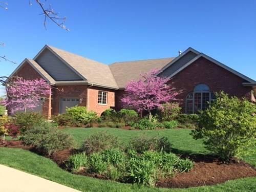 22880 Lakeview Estates, Frankfort, IL 60423