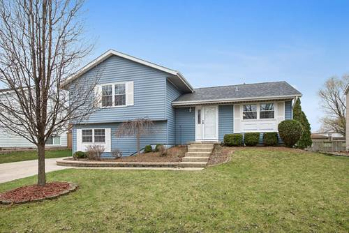 20814 S Hickory Creek, Frankfort, IL 60423