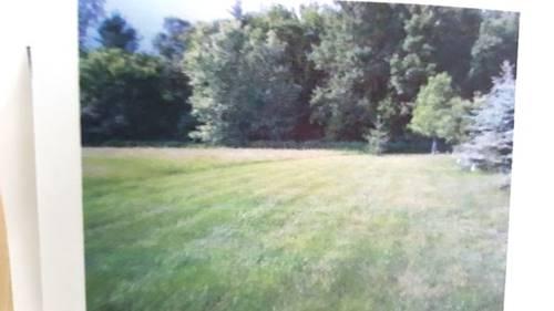 16302 Foxglove, Wadsworth, IL 60083