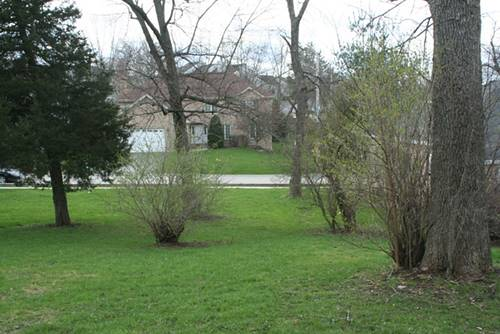 420 Lake Shore, Wauconda, IL 60084