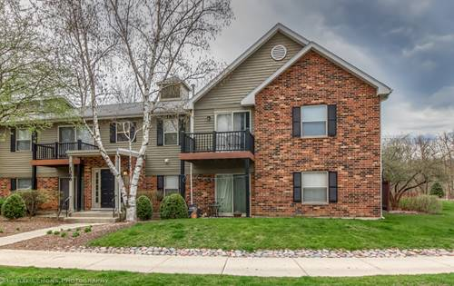 1300 Mc Dowell Unit 101, Naperville, IL 60563