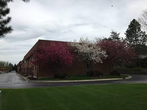 6325 Clarendon Hills Unit 9, Willowbrook, IL 60527