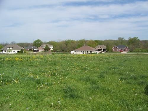 953 Arrowhead, Elwood, IL 60421