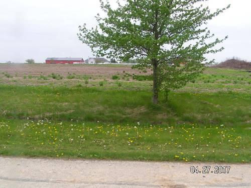 10821 Saddle, Monee, IL 60049