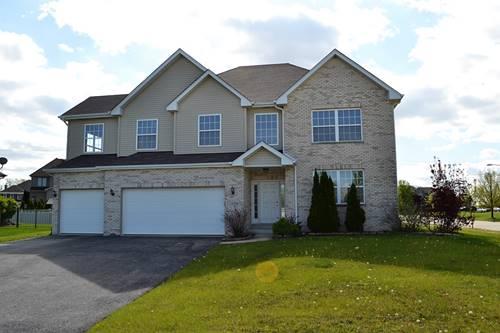 12706 Wexford, Plainfield, IL 60585