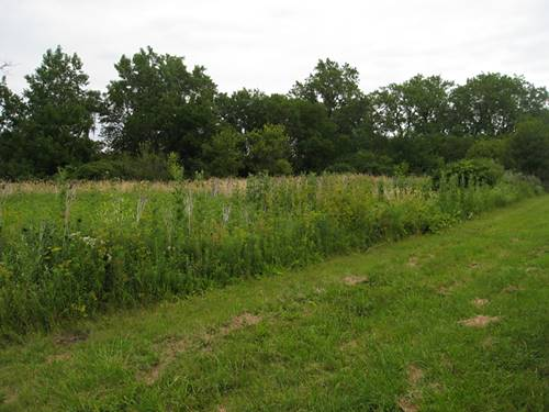 lot Harlem And Whispering Hill, Monee, IL 60449