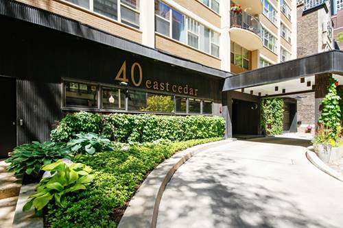 40 E Cedar Unit 7A, Chicago, IL 60611 Gold Coast