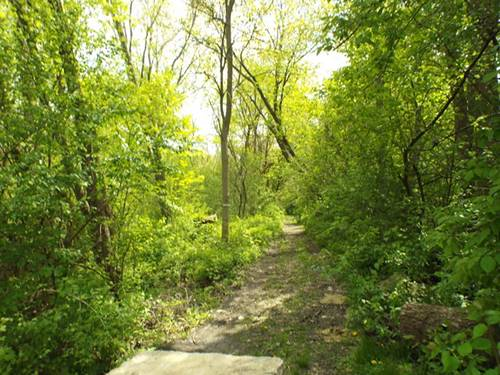 LOT 1 Foster, Bloomingdale, IL 60108