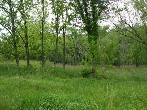 Lot 297 Hidden Springs, St. Charles, IL 60175