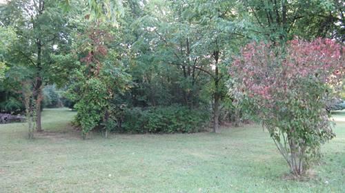 22057 W Virell, Antioch, IL 60002