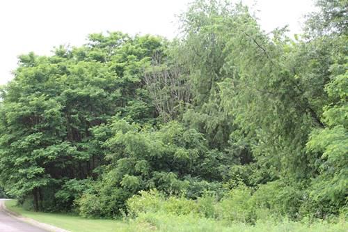 0S701 Autumn Woods, Elburn, IL 60119