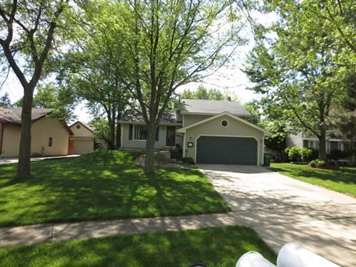 14512 S Birchdale, Homer Glen, IL 60491