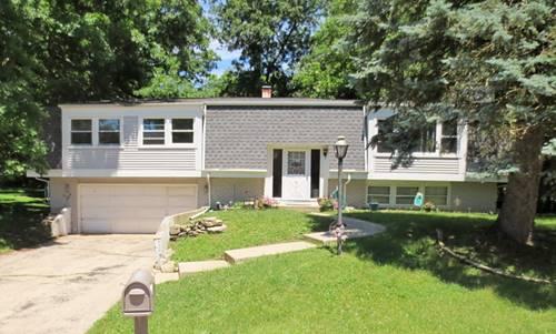 111 Briarwood, Carpentersville, IL 60110
