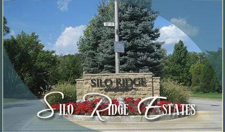 Lot # 69 Silo Ridge, Orland Park, IL 60467