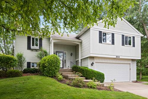 651 Buckthorn, Buffalo Grove, IL 60089
