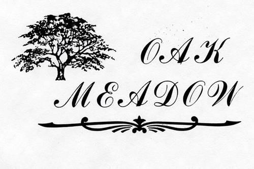 lot 3 Oak Meadow, Homer Glen, IL 60491