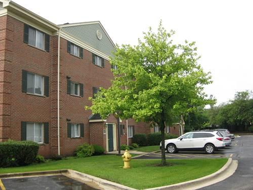 1528 N River West Unit 2B, Mount Prospect, IL 60056