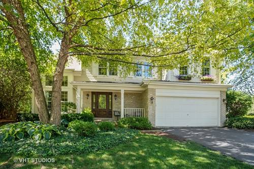 939 Christa, Elk Grove Village, IL 60007