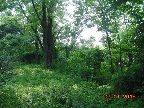 18552 Wolf, Mokena, IL 60448