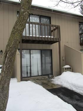19 St Thomas Colony Unit 5, Fox Lake, IL 60020