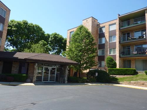 1101 S Hunt Club Unit 415, Mount Prospect, IL 60056