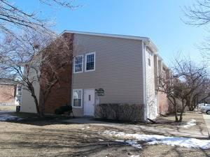 1329 E Wyndham Unit 206, Palatine, IL 60074