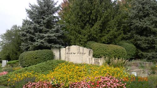 215 Forest Edge, Palos Park, IL 60464