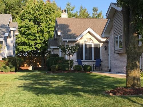 16131 Lake Villa, Tinley Park, IL 60477