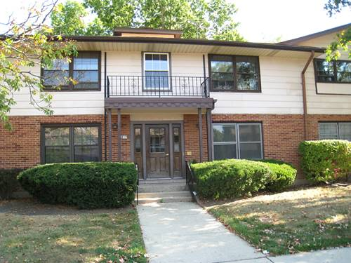 217 Washington Unit C, Elk Grove Village, IL 60007