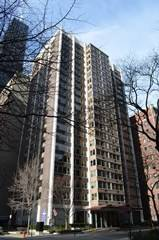860 N Dewitt Unit 1907, Chicago, IL 60611